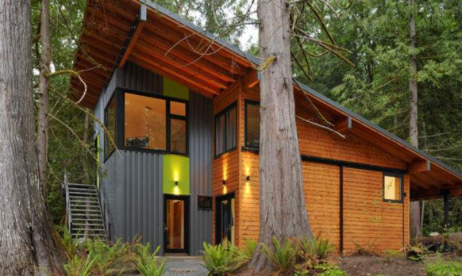 Shed Roof Home Design Ideas Remodel Decor