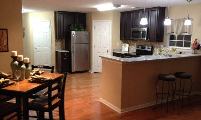 Small Open Concept Kitchen